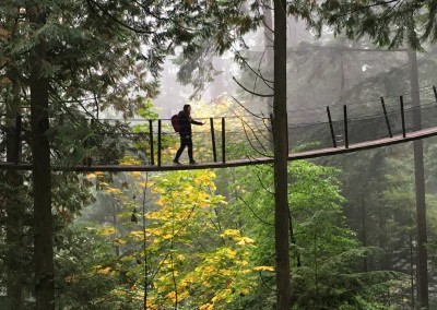 VIU (Kanada) - Capilano Suspension Bridge