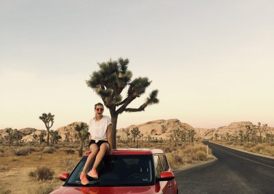 NU (US) Roadtrip through Joshua Tree National Park